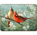 Jason Garden Birds Placemats